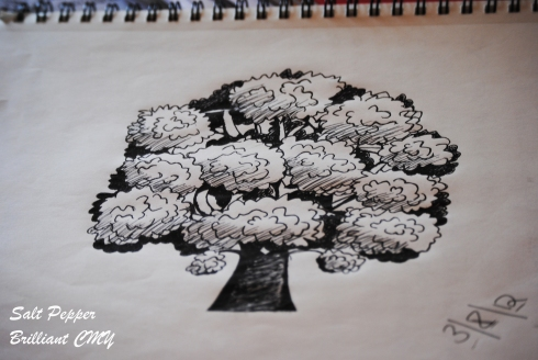 Photo of a tree I drew from one of Shoo's tutorials.